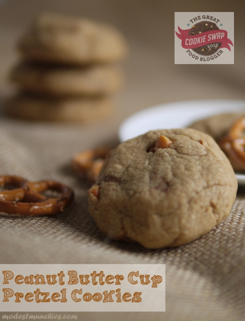 the great food blogger cookie swap peanut butter pretzel cookies